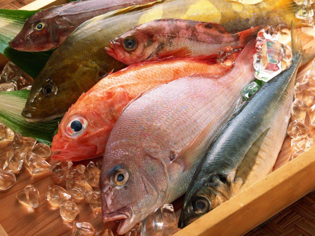 К чему снится жирная рыба женщине фото