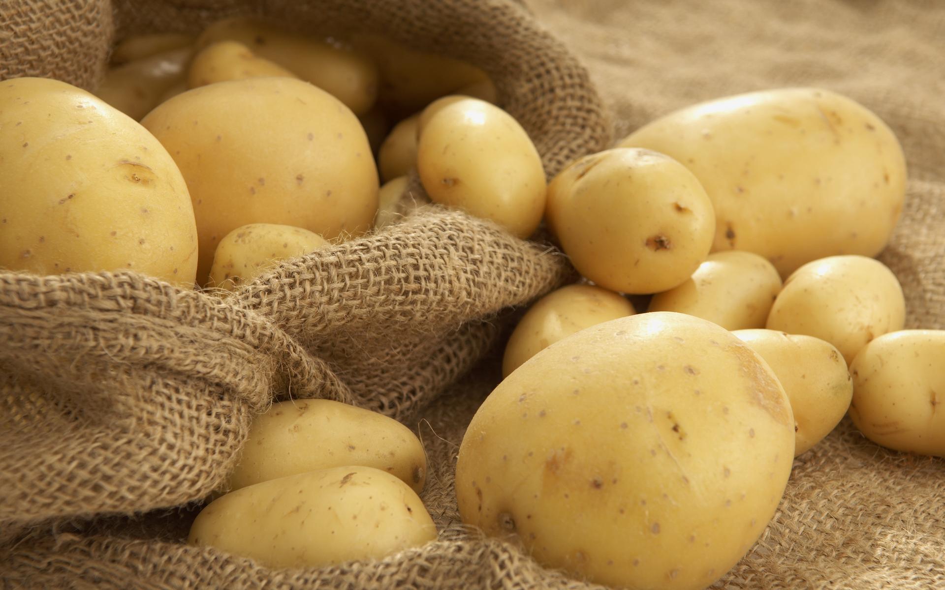 К чему снится выбирать картофель фото