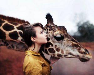девушка с жирафом