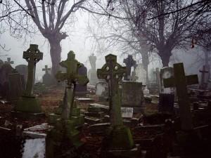 кладбище по фрейду