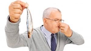пропавшая рыба