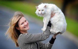 Белый кот для женщины