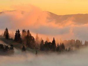 Искать дорогу в тумане