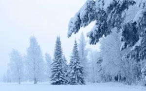 Значение таких снов зимой