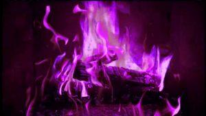 Сонник. фиолетовый цвет