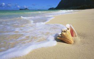 Найти на побережье