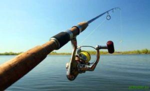 Орудие для ловли рыбы