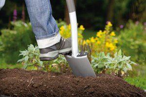 Огородные работы