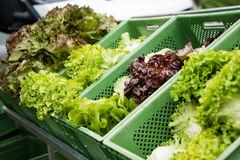 Продавать овощ