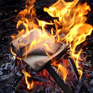 Сгоревшая бумага