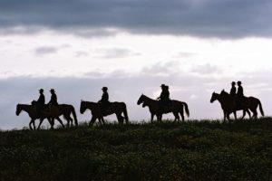 Люди на лошадях