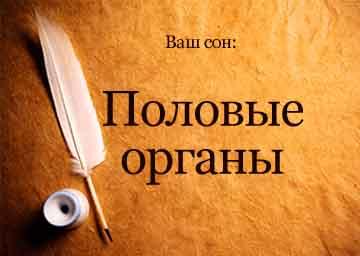 Сиськи Кати Варнавы