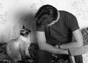 Разговаривать с животным