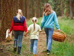 Собирать всей семьей
