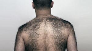 Мужское волосатое тело