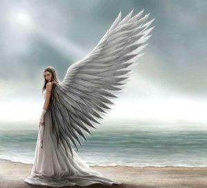 Большие белые крылья