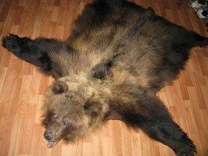 Медвежья
