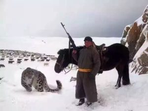 Охотится на зверя